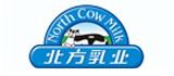 北方乳业 网站搭建